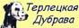 питомник далматинов Терлецкая Дубрава